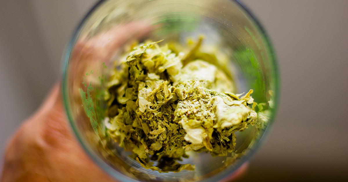 Breaking Down the Science of Dry Hopping and its Effects on Bitterness