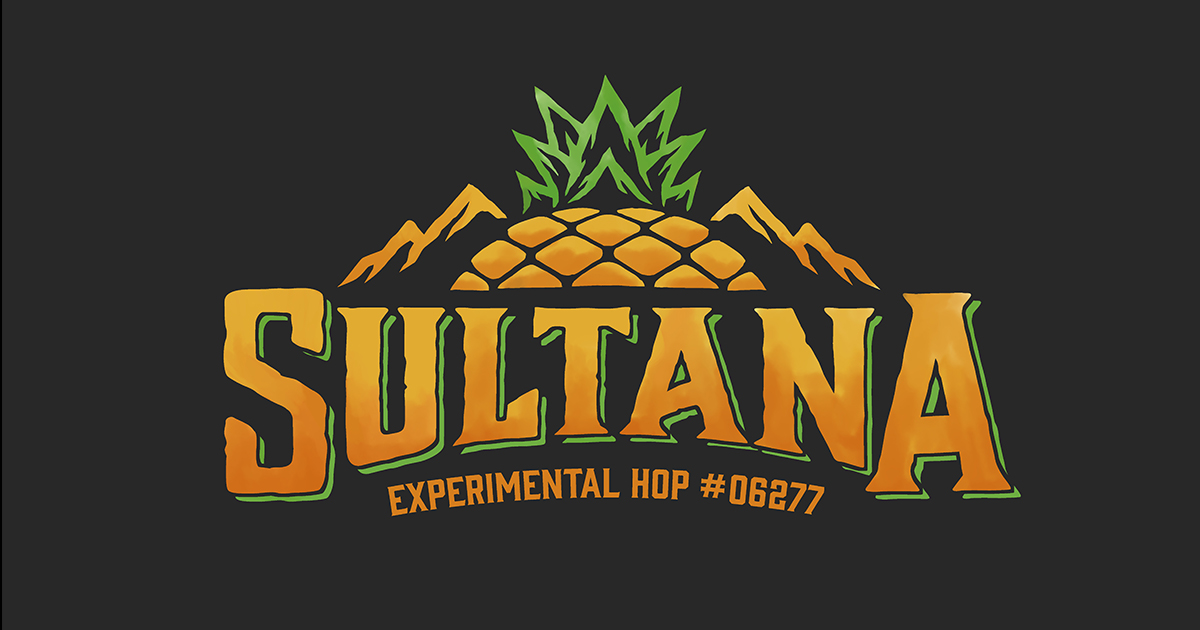 One of Hopsteiner's Most Popular Experimental Hops Gets a Name: Sultana™ is Here!