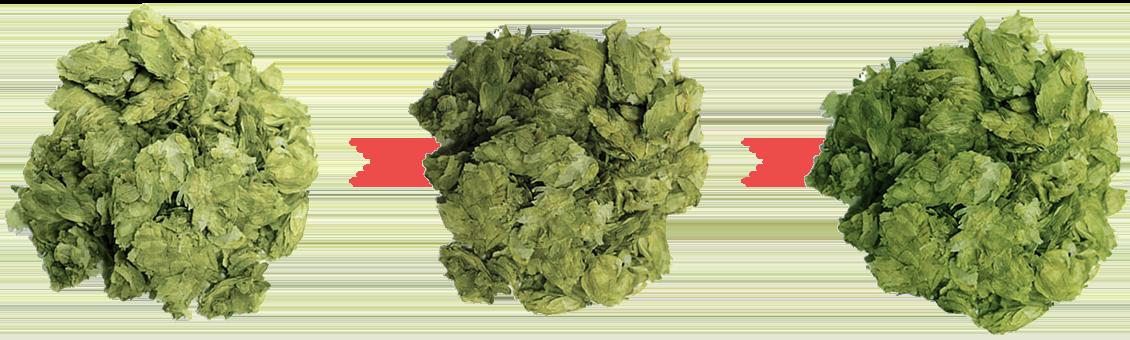 hop leaf piles